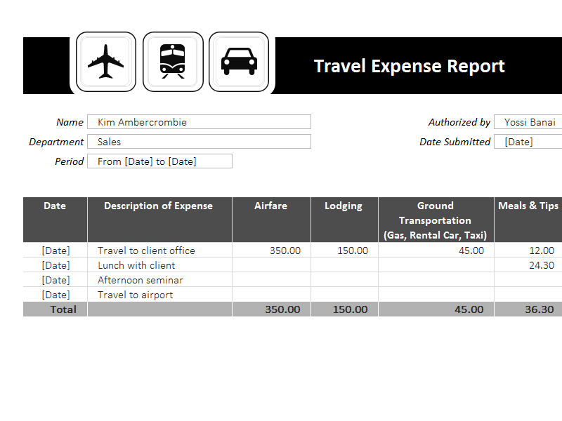 Free Download Travel Expense Report Template