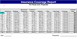 insurance coverage excel template  Download Insurance coverage report