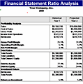 ratio analysis and financial statement for a private school Center for excellence in accounting and security analysis columbia business school analysis and valuation of insurance companies financial statement.