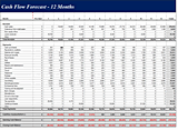 Download Cash flow forecast (12 months)
