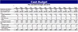 Free Download Cash budget