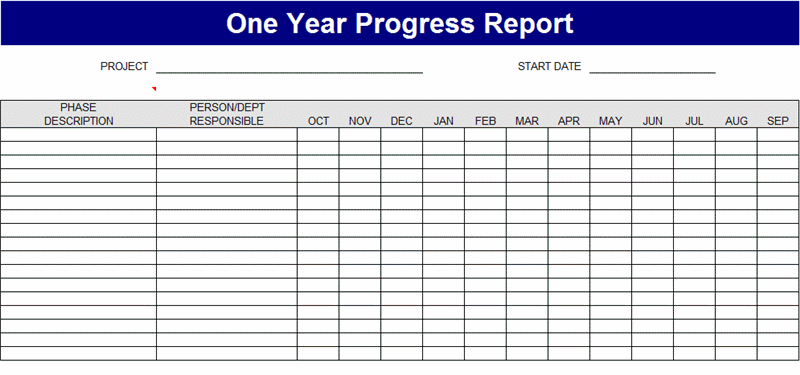 Free Download One year project process report