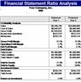 Financial Statement Ratios