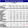 Weekly Cash Flow Projection