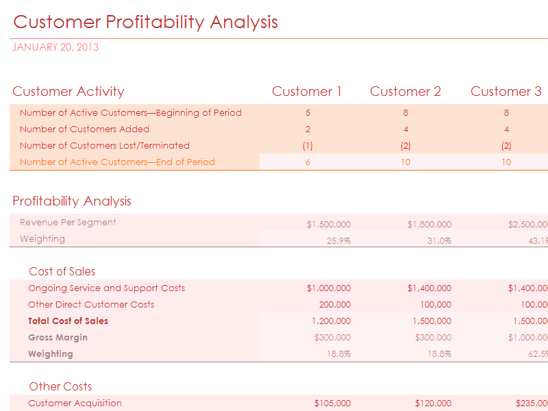 Download Excel 2007 Customer Profitability Analysis With Summary Metrics Chart