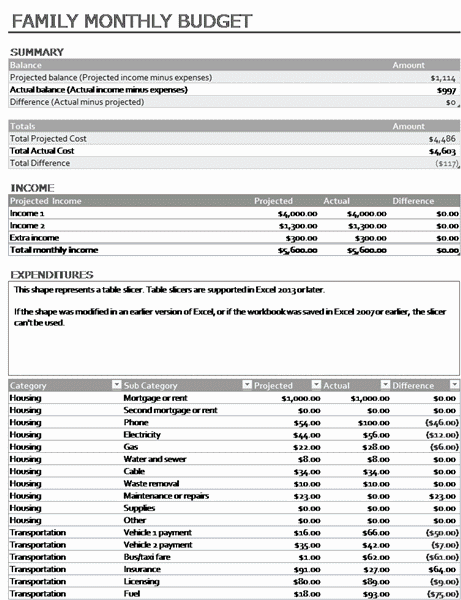 01 Family Monthly Expense Report Template
