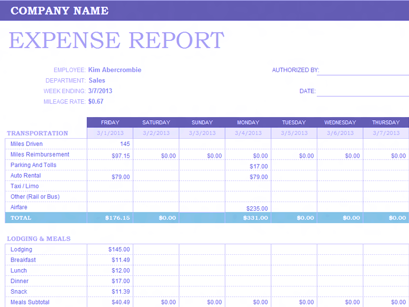 04 Weekly Expense Report Template